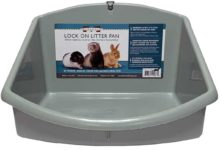 Photo of Can you use cat litter in a ferret cage